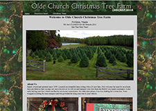 olde church tree farm